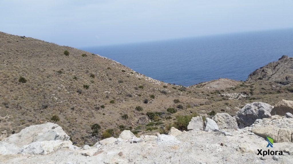 Punta de la Hoya de la Torre