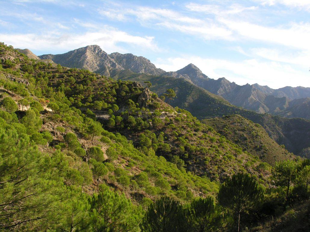 entorno y rutas de turismo activo en almeria